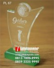 Plakat Laser Grafir Golf Gober Ladies